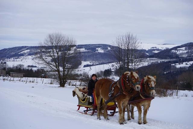 Pferdeschlittenfahrt, 2 Pferde am Schlittenmit Personen, von Ferne