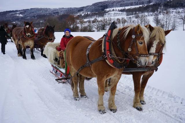 Genussgasthof - 4 Pferde am Schlitten in der Rhöner Winterlandschaft
