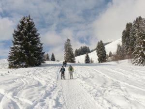 Schneeschuhwandern - Gruppe von Hinten