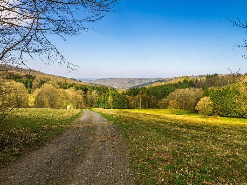 Genusswanderwoche - Blick über Wald und Wiesen