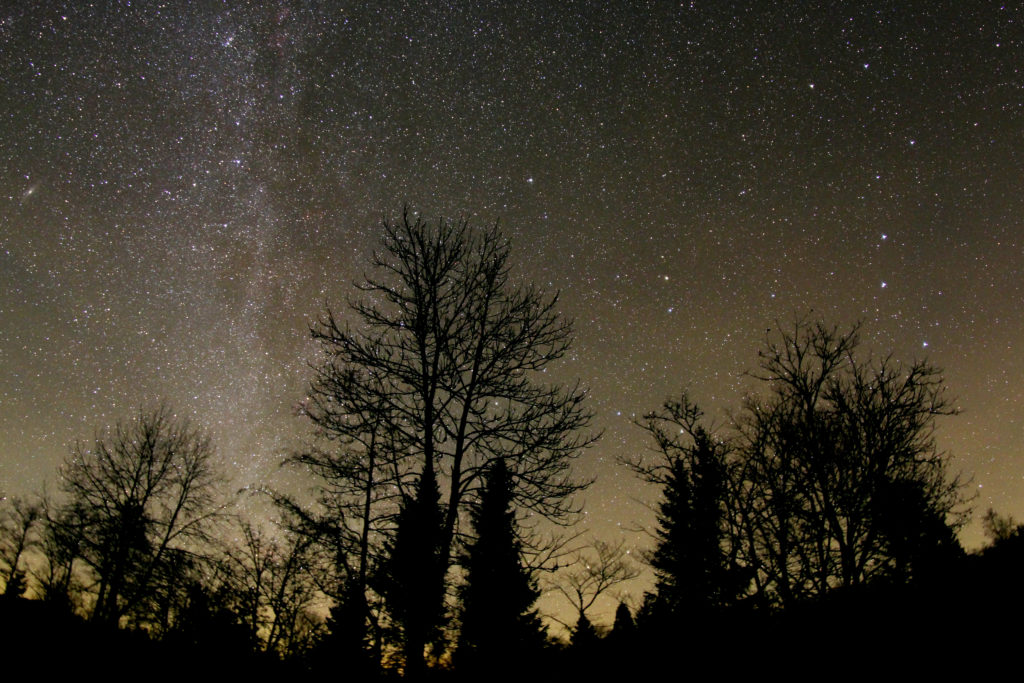 Sternenpark - Milchstraße über dem Schwarzen Moor